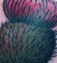 Marcus   Buntland Ink